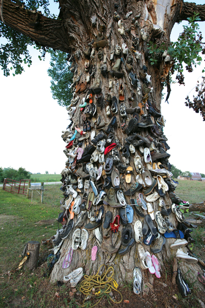 Christmas Shoe Tree.The 8 Wonders Of Kansas Customs A Kansas Sampler