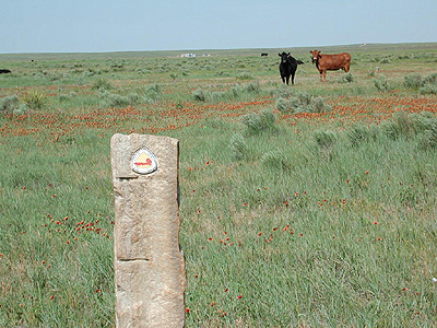 Cimarron National Grassland Morton County 8 Wonders Of